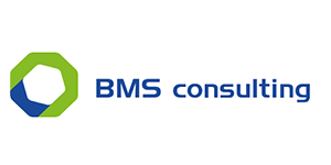 BMS Consulting